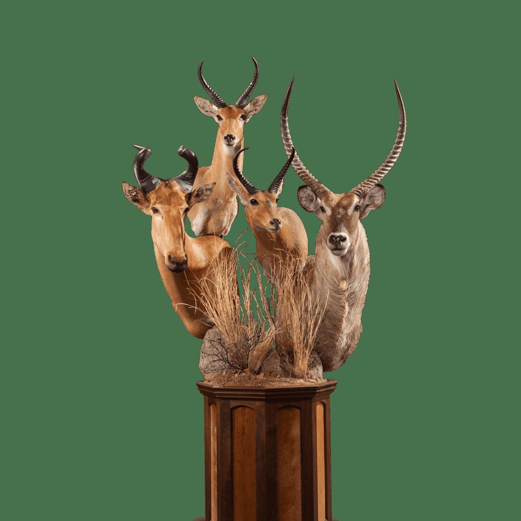 multiple horned african animals pedestal