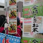 金崎さんちのお米チラシ