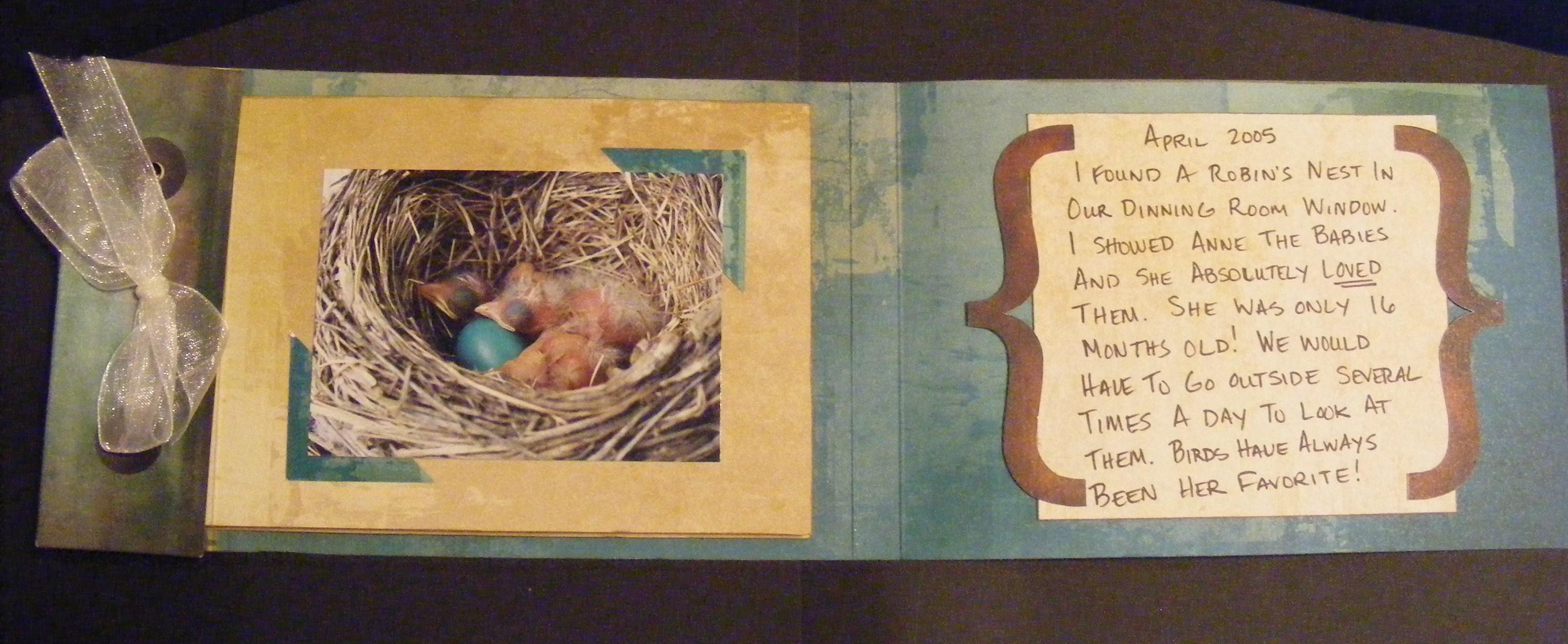 Bird Scrapbook p.1