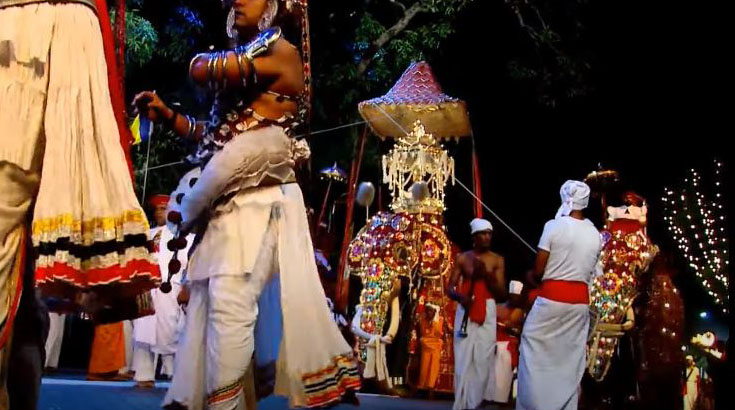 The royal tusker carrying the golden casket with the Sacred Tooth Relic of Buddha