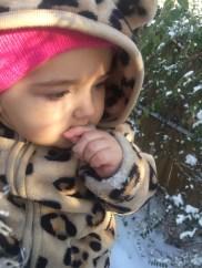 First taste of snow.