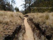 jalur cetho yang menantang pendakian gunung lawu dari cetho