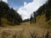 tempat peperangan pendakian gunung lawu dari cetho