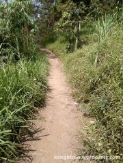 trek menuju pos 1 pendakian gunung lawu dari cetho
