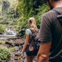 Naturcoaching und Selbsterkenntnis in der Natur