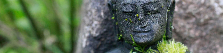 Ein steinernes Buddhagesicht mit Moos bewachsen