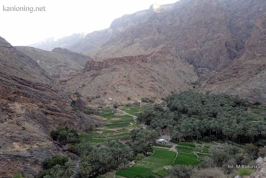 Oaza w Balad Sayt