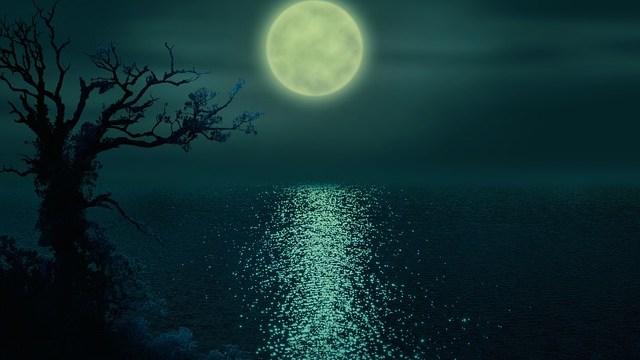 月になった逆エンパス