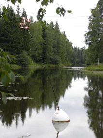 2009 TAIDEKEHÄ ELÄÄ DSCN0152