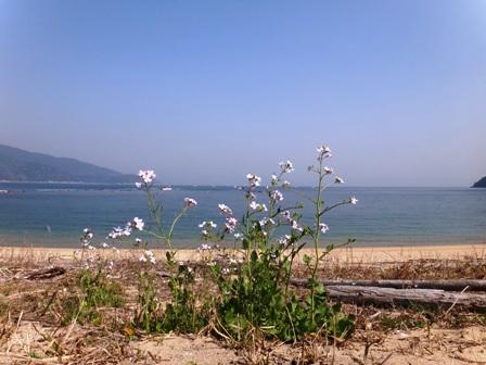 浜1.JPG