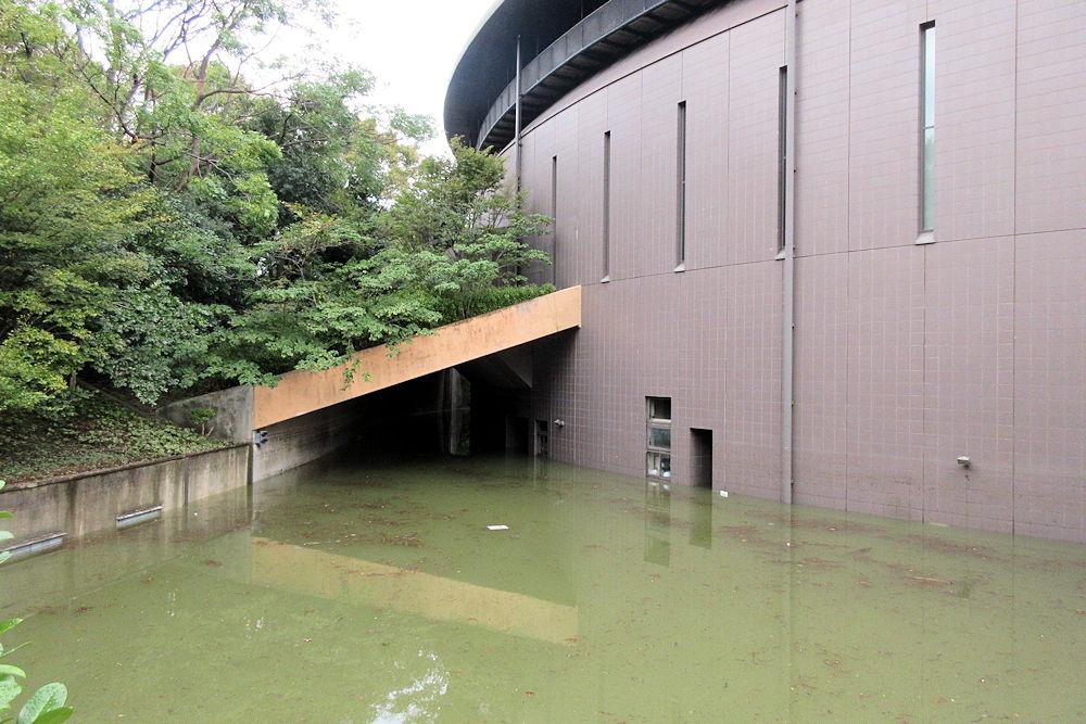 区 川崎 浸水 中原 市