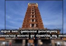 Sri-Rangapatna-tour-guide