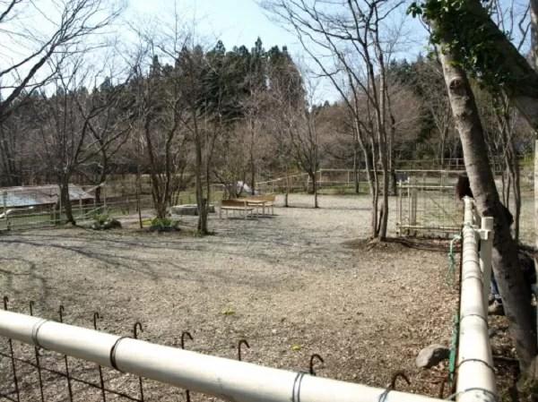栃木県のドッグフリーサイトがあるキャンプ場「那須高原アカルパ」