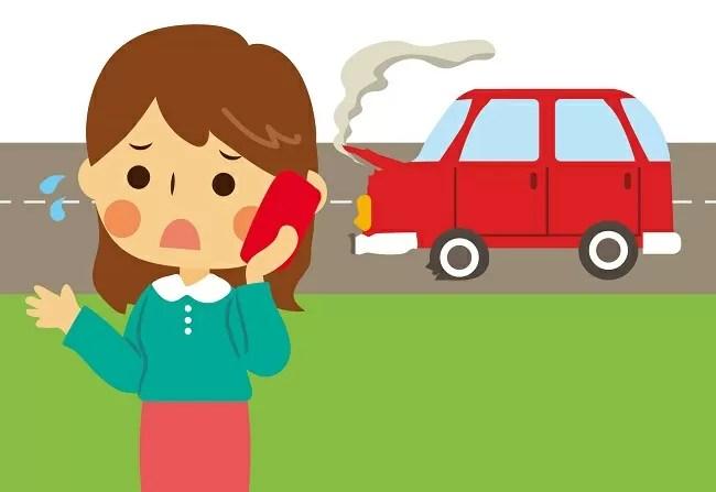 自動車保険のロードサービスのペット補償