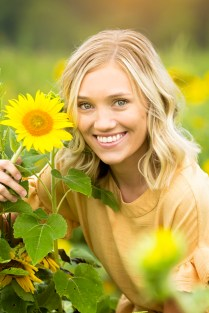 Sunflowers (5)
