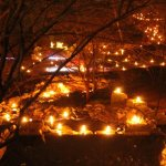 Tickets on Sale for Holiday Luminary Walk at Overland Park Arboretum