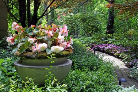 Botanical garden plant