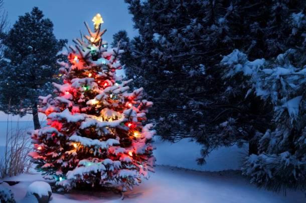 Lenexa Sar-Ko-Aglow Christmas display
