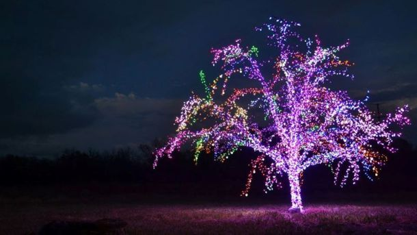 Holiday light displays in Kansas City - The Magic Tree in Lee's Summit