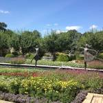 Essential Gardens to Visit in Kansas City This Spring