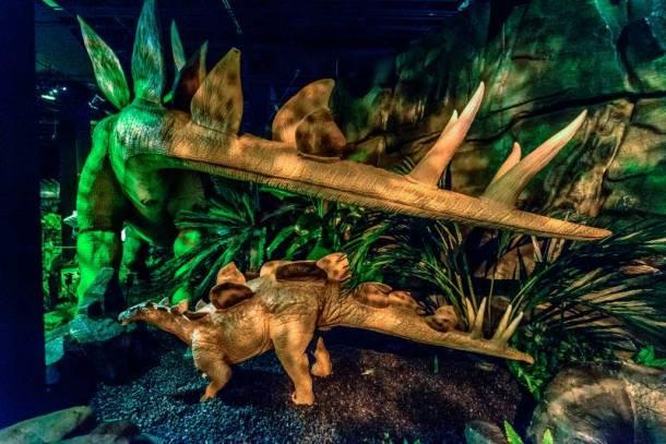 Union Station Dinosaurs