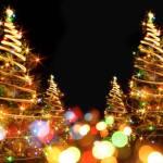Winter Magic Drive Through Christmas Lights