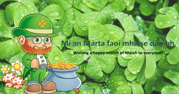 Irish KantanMT