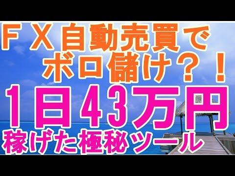 FX自動売買でボロ儲け?たった1日43万円稼いた極秘ツールはコレだ!