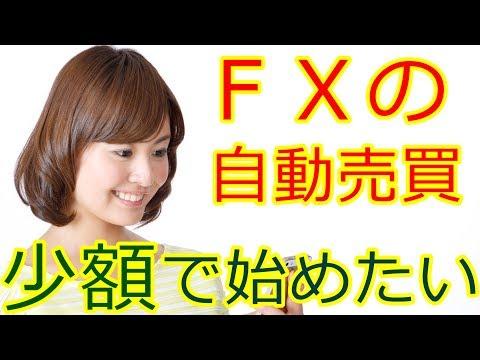 FX自動売買を少額からリスクなく始めたい!