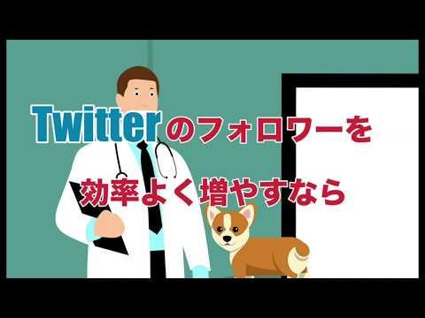 Twitterのフォロワーを効率よく増やす無料ツール『SocialDog』のメリットを解説します