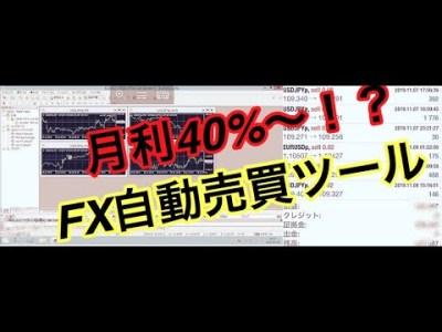 【自動売買】月利40%~自動で稼げるFX自動売買ツール 4ヶ月運用した結果…..