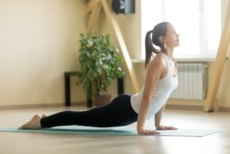 Young attractive woman in upward facing dog pose, home interior
