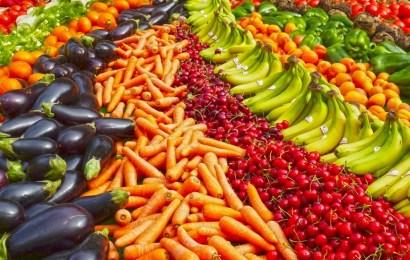Wie euch die richtige Ernährung zu einem besseren Kanuten macht – Tipps von unserer Nationalelf