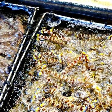 Fresh seafood at Chuen Kee Sai Kung Hong Kong