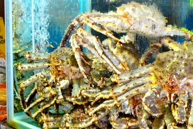 Crawly crabs