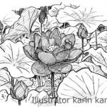 花 白黒 イラスト ペン