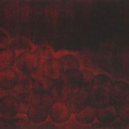 Grape 02・葡萄 02 Mezzotint メゾチント image size H14.1xW34.5cm ed.2 2010