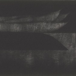 String beans・ストリングビーンズ Mezzotint・Aquatint・Gampi-Paper(Mino) メゾチント・アクアチント・雁皮刷り・美濃和紙 image size H8.7cmxW14.8cm ed.30 2010