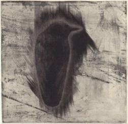 Crow・カラス Mezzotint・Etching メゾチント・エッチング image size H9.7xW9.9cm ed.30 2010