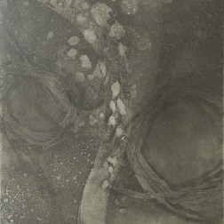 Flowing-3BC1 Etching・Drypoint・ Aquatint・BFK Rives・Gampi-Paper(Mino) エッチング・ドライポイント・アクアチント・BFK紙・雁皮刷り・美濃和紙 image size H30cmxW27.4cm ed.12 2017