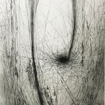 Seed 08・種 08 Etching・Drypoint・Gampi-Paper(Mino) エッチング・ドライポイント・雁皮刷り・美濃和紙 image size H50cmxW38cm ed.30 2015