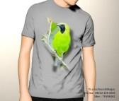 kaos cucak ijo, kaos burung cucak hijau
