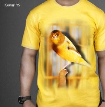 kaos burung ocehan kenari kuning, kaos gambar kenari, kicau mania