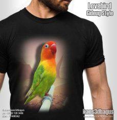 KAOS LOVEBIRD, Kaos Burung Kicau, Kaos KLUB BURUNG, Kaos KICAU MANIA, Kaos 3D Gambar Burung, Kaos 3D, Kaos 3D Bagus, http://instagram.com/kaos3dbagus, WA : 08222 128 3456, LINE : kaos3dbagus