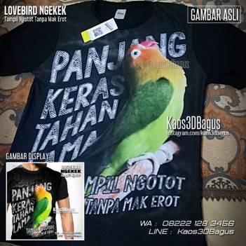 Kaos Klub Burung, Kaos Lovebird Mania, Kaos Kicau Mania, Kaos 3D