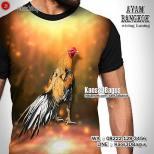 Kaos Gambar Ayam Aduan, Kaos Ayam Bangkok Wiring Kuning, Kaos3D, Ayam Jago, Rooster