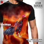 Kaos Ayam Aduan, Kaos Ayam JAGO, Ayam Bangkok Wiring Kuning, Kaos Gambar Ayam, Rooster