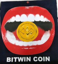 bitwincoin