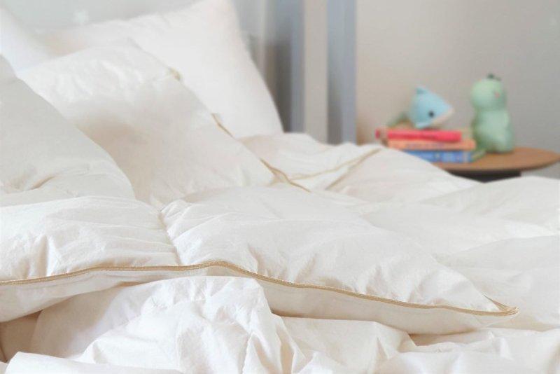 Down duvet comforter quilt insert Malaysia