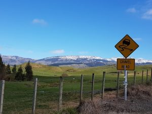 283-on-the-road-to-gisborne